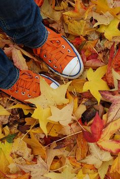 orange converse in autumn's leaves Autumn Day, Autumn Leaves, Fallen Leaves, Autumn Girl, Hello Autumn, Orange Converse, Orange Sneakers, Orange Shoes, My Favorite Color