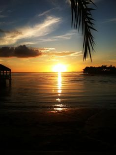Sunset - Tampa Bay