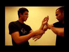 Pak Sao, Tan Sao, Lap Sao and Chi Sao Martial Arts Techniques, Self Defense Techniques, Marshal Arts, Tai Chi Qigong, Hand To Hand Combat, Martial Arts Training, Wing Chun, Aikido, Krav Maga