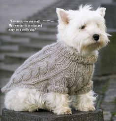 Finished measurements: More - Tap the pin for the most adorable pawtastic fur baby apparel! You'll love the dog clothes and cat clothes! Knitted Dog Sweater Pattern, Knit Dog Sweater, Dog Pattern, Collar Pattern, Small Dog Clothes, Puppy Clothes, Knitting Patterns Free Dog, Pet Sweaters, Pull Bebe