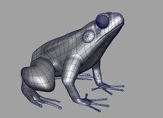 maya wireframe frog