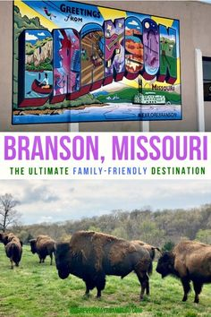 Branson, Missouri was an awesome place to visit for lots of fun, beautiful scenery, and fantastic attractions. Branson Vacation, Florida Vacation, Arkansas Vacations, Travel Oklahoma, Usa Travel, Travel Tips, Travel Ideas, Travel Destinations, Best Family Vacations
