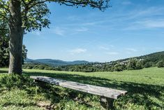 Picknickplätze wien Vienna, Mountains, Places, Nature, Travel, City, History, Stones, Nice Asses