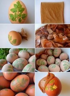 Eco-friendly Easter - How to dye and decorate Easter eggs naturally - selbstgemacht - Bathroom crafts Easter Egg Dye, Easter Activities, Easter Holidays, Nature Decor, Egg Decorating, Easter Crafts, Eco Friendly, Bathroom Crafts, Brown Eggs