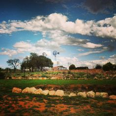 Kalahari farm in South Africa