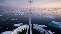 An expedition to the Arctic