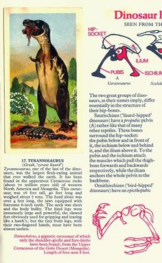 Love in the Time of Chasmosaurs: Vintage Dinosaur Art: Prehistoric Animals (Brooke Bond Picture Cards)