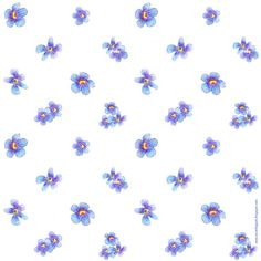FREE printable forget-me-not flower scrapbooking and gift wrapping papers