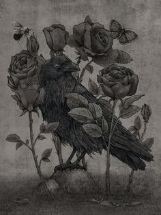 Nevermore by Terry Fan