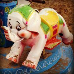 "70 - Ready to Ride? ""An elephant, an elephant, my kingdom for an elephant!"", The Roc, that Persian guy, replied. February's Winner of Digital Awards 2014: http://2014.digitalawards.it/prod/60-winter_beach_tales.php#.UybxKq15Mfn"