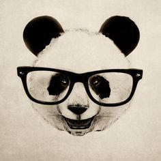 Panda Head artist Isaiah K. Stephens