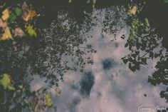 """""""The sky on the ground. (Or the ground up in the sky?) By me ❤"""