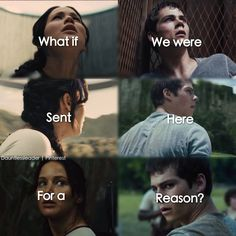 Yayaya my first maze runner edit! Eeepp!!! Please don't steal this edit I worked hard on it so yeah if you repin please don't say it's yours bc I've had someone steal my edits before and It was awful ): so comment if I should post more of these ( of mine ) (:
