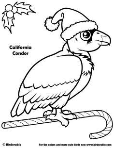 Birdorable California Condor Christmas Coloring Page