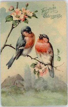 Ostern Vogel: Ansichtskarten-Center Onlineshop