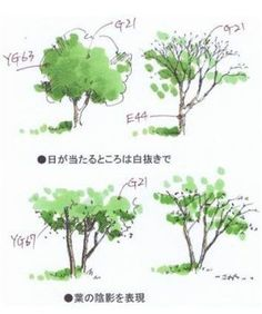 10 Landscaping Design Ideas to Enhance Your Home Garden Landscape Sketch, Landscape Architecture Design, Landscape Drawings, Fantasy Landscape, Watercolor Landscape, Watercolor Art, Plant Sketches, Tree Sketches, Drawing Tutorials For Beginners
