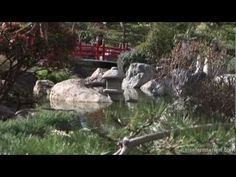 Monaco: Jardin Japonais by Reisefernsehen.com - Reisevideo / travel video