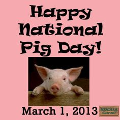 Day 9: Post something random. March 1st, 2013 is national pig day.