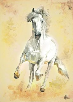 """""""White Storm"""" White horse in watercolors and acrylics in A4 size 20x30cm size…"""