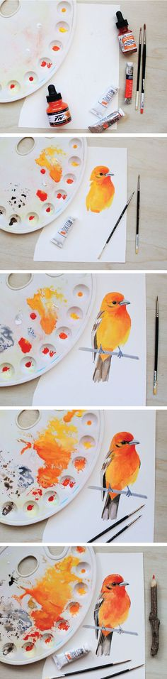 The Evolution of A Bird Painting: How I Paint and What Materials I Use