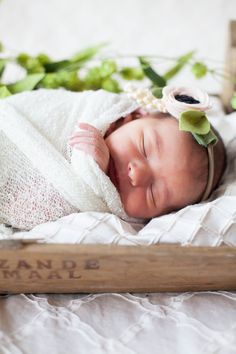 Newborn photography by Tulips and Tangerines Photography - fancy free finery headband, gauze swaddle, crate