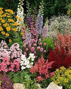 free flower garden plans - easy | Perennial Flower Garden Ideas Photograph | Thriving Perennia