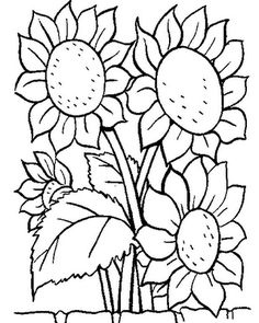 Flowers Coloring pages. Printable Flower Coloring Pages.These printable flower coloring pages are free. Coloring pictures and sheets of f. Sunflower Coloring Pages, Food Coloring Pages, Printable Coloring Pages, Adult Coloring Pages, Coloring Pages For Kids, Coloring Books, Coloring Pages Of Flowers, Flower Coloring Sheets, Garden Coloring Pages