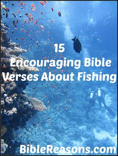 Get well cards bible for Bible verses about fish
