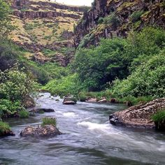 The John Day River in Oregon was designated as Wild and Scenic in 1988. The river flows through a number of colorful canyons broad valleys and breathtaking terrain. Photo: Tim Palmer USFWS #wearerivers #rivers #wildandscenic