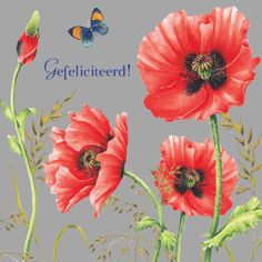 E-mail - Linda Cauberghs - Outlook Birthday Wishes, Birthday Cards, Happy Birthday, Marjolein Bastin, Dutch Painters, Dutch Artists, Nature Paintings, Floral Motif, Watercolor Flowers