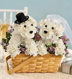 #1800flowers              #love                     #Love #Fur-ever�          Love You Fur-ever�                                  http://www.seapai.com/product.aspx?PID=67108