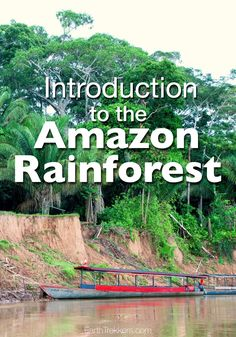 An Introduction to the Amazon Rainforest in Peru. Flying into Puerto Maldonado, a boat ride on the Madre de Dios River, and our stay at the Inkaterra Lodge.