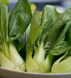 Bok choy is very low