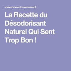 La Recette du Désodorisant Naturel Qui Sent Trop Bon !