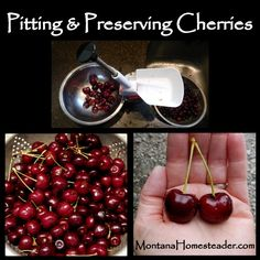 Pitting and Preserving Cherries. Here's how we pit large quantities of cherries and preserve them to eat all winter long!  Montana Homesteader