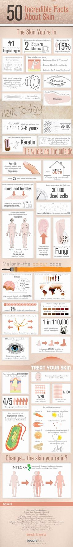 A zillion awesome facts about skin and hair. It's better than I just made it sound.