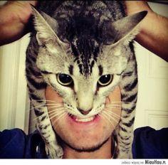 Człowiek kot - albo przynajmniej człowiek w kociej masce :D