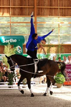 hazykatie:    I am in awe of vaulting…one of my fav performances