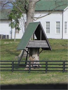 Tree stump tree house... for the next time we have a stump that we don't know what to do with.