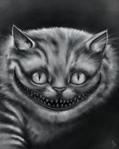Cheshire Cat-we're all mad here