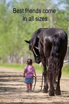 The big guys are the gentle ones.....it's the ponies you gotta watch out for.