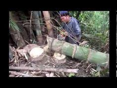 Die 440 Besten Bilder Von Bambus Skulptur Sculptures Bamboo Und