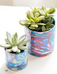 DIY - marbled succulent pots