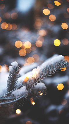 Lights are simply part of Christmas time and winter time. In winter or at Christmas time you can mak Christmas Mood, Noel Christmas, Merry Little Christmas, Christmas Decor, Christmas Tumblr, Cabin Christmas, Xmas Holidays, Christmas Fashion, Christmas Paper
