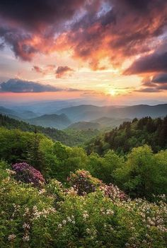 Sunset Landscape, Mountain Landscape, Watercolor Landscape, Landscape Design, Landscape Art, Great Smoky Mountains, Mountain Photography, Nature Photography, Photography Articles