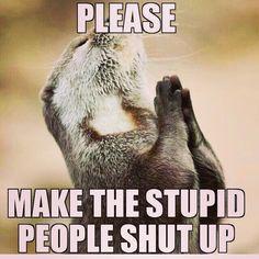 Please do. Lol Funny Pics, Funny Pictures, Stupid People, Shut Up, So True, Lol, Fanny Pics, Fanny Pics, Funny Photos
