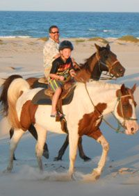 Riding horses on the beautiful beach of South Padre Island is one of the most memorable experiences anyone can have. All of our horseback rides travel right along the beach and water's edge where we often see a variety of shoreline birds and marine life.