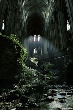 It stood for unknown ages. The forest slowly reclaiming what had once been taken. Yet the memories remained, wandering like ghosts down the forsaken halls and galleries. Waiting for someone curious enough to search for them. ~AM