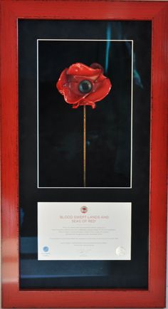 Tower of London ceramic poppy