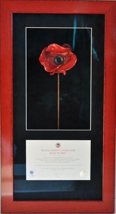Tower Of London Poppy Display Case Via Plasticonline